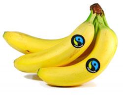 Bananas Fair Trade | Publish with Glogster!